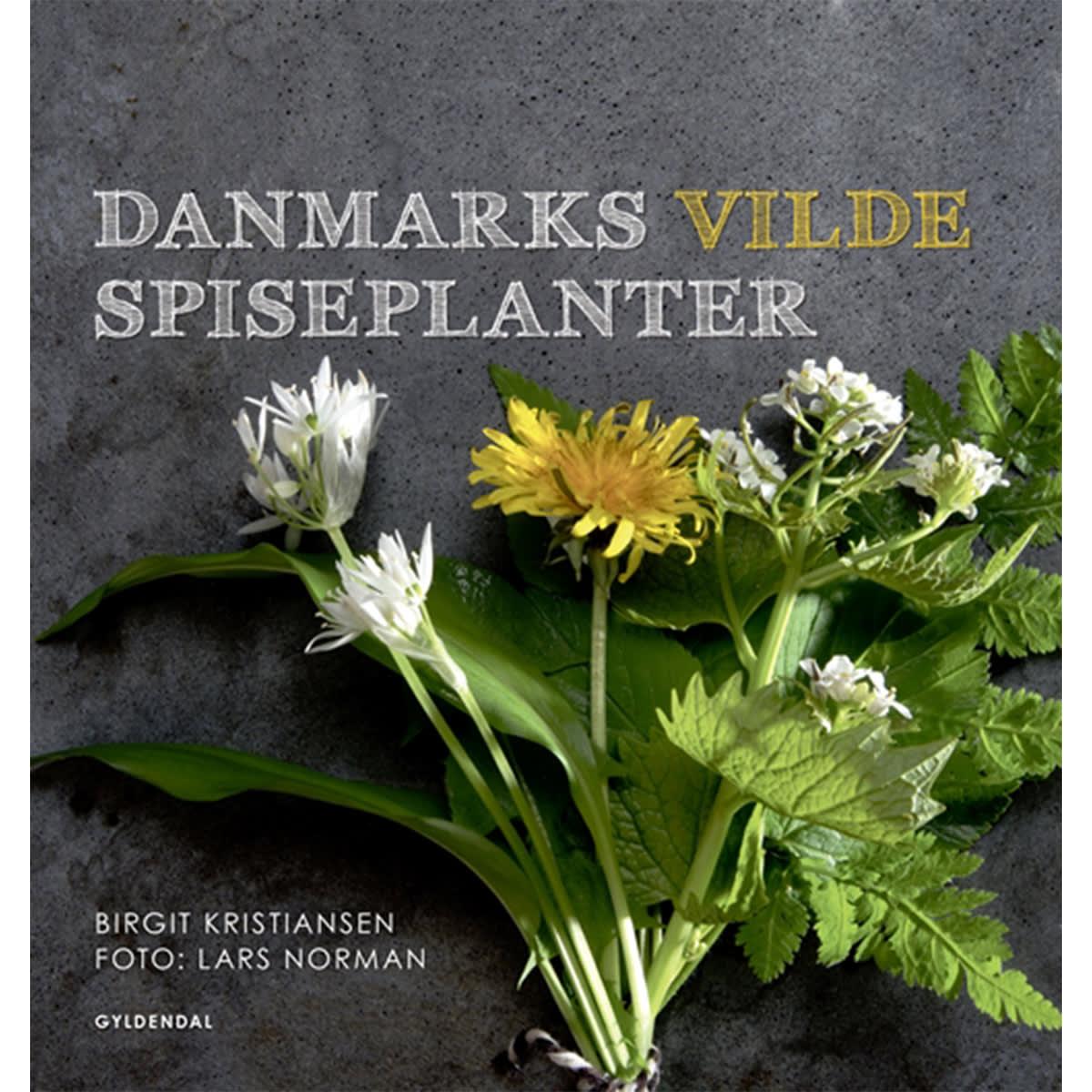Af Birgit Kristiansen