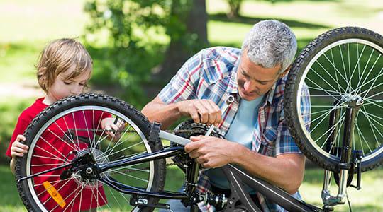 samling af cykler
