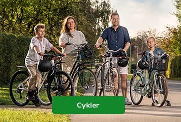 Se alt i cykler